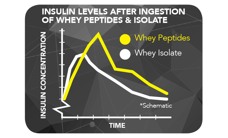 INSULIN LEVELS AFTER INGESTION OF WHEY PEPTIDES AND ISOLATE AT www.arnutrition.pk